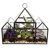 Deco Glass Geometric DIY Terrarium, Succulent & Air Plant - Castle Shaped for Indoor Gardening Decor- Create Your own Flower, Fern, Moss Centerpiece- Amazing Holiday and Wedding Gift