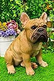 Ebros Large Lifelike Realistic French Bulldog Statue with Glass Eyes 15.75