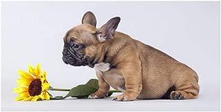 sanjiiNG Puppy Sunflower Dog Bulldog francés Carteles e impresiones Pintura animal Minimal Scandinavian Nordic Wall Picture para sala de estar 50 * 100cm
