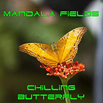 Chilling Butterfly