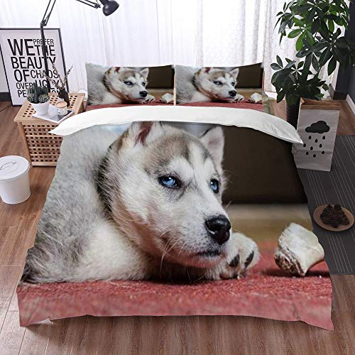 Yuxiang Bedding Sets Duvet Cover Set, Siberian Fur Husky Puppy Pet Pretty Adorable Bone Animals Wildlife Domestic Food,3-Piece Comforter Cover Set 135 x 200 cm +2 Pillowcases 50 * 80cm