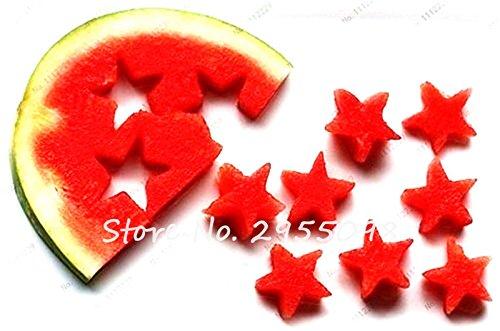 50 Pcs vert chair de melon d'eau Graines Japon Melon d'eau Plantes d'intérieur Bonsai Graines de fruits savoureux légumes comestibles Graines libre Shippin 11