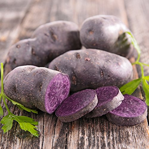 Fingerling Potato Purple Peruvian - 10 Certified Organic Heirloom Seed Potato | Ships from Easy to Grow TM