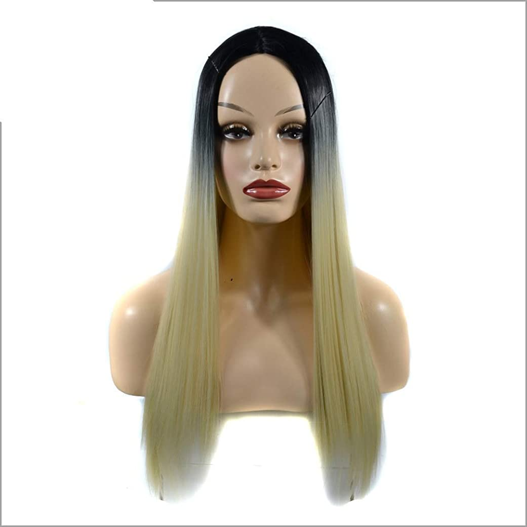 啓示実証する消費者HOHYLLYA 女性の長いストレートフルかつらコスチューム人工毛ヘアピースアニメコスプレパーティーガール+かつらキャップパーティーかつら (色 : Gradient, サイズ : 60cm)