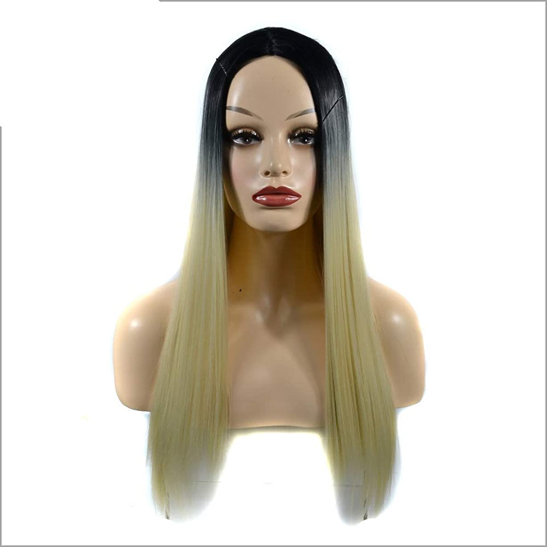 個人的に懸念安価なIsikawan コスプレパーティーガール+かつらキャップ女性のロングストレートフルウィッグコスチューム人工毛ヘアピース用アニメ (色 : Gradient, サイズ : 60cm)