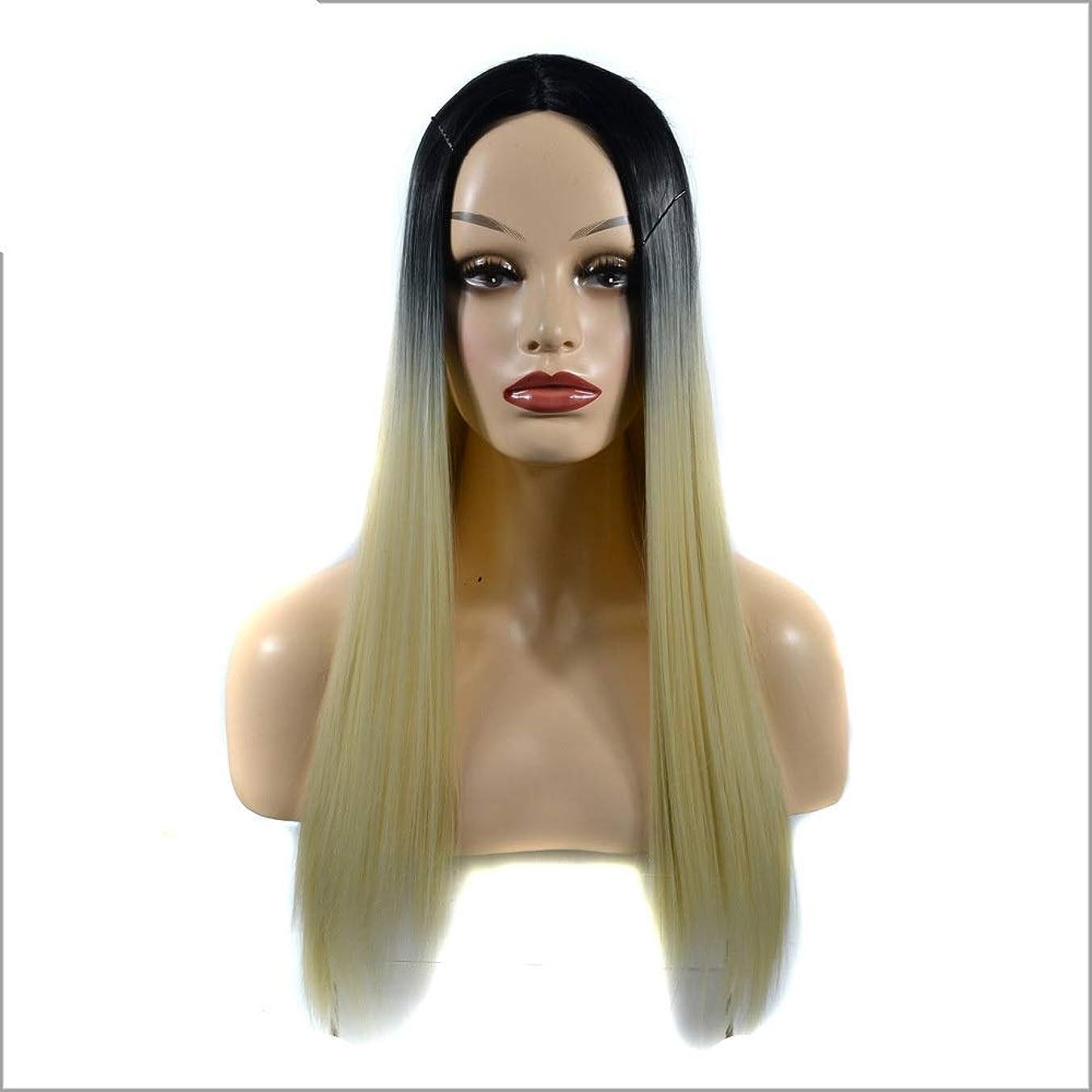 礼儀有利崖BOBIDYEE 女性の長いストレートフルかつらコスチューム人工毛ヘアピースアニメコスプレパーティーガール+かつらキャップパーティーかつら (色 : Gradient, サイズ : 60cm)