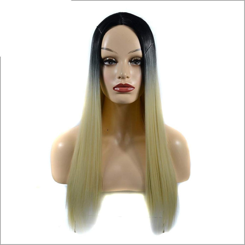 苦しみドラゴンマンハッタンHOHYLLYA 女性の長いストレートフルかつらコスチューム人工毛ヘアピースアニメコスプレパーティーガール+かつらキャップパーティーかつら (色 : Gradient, サイズ : 60cm)
