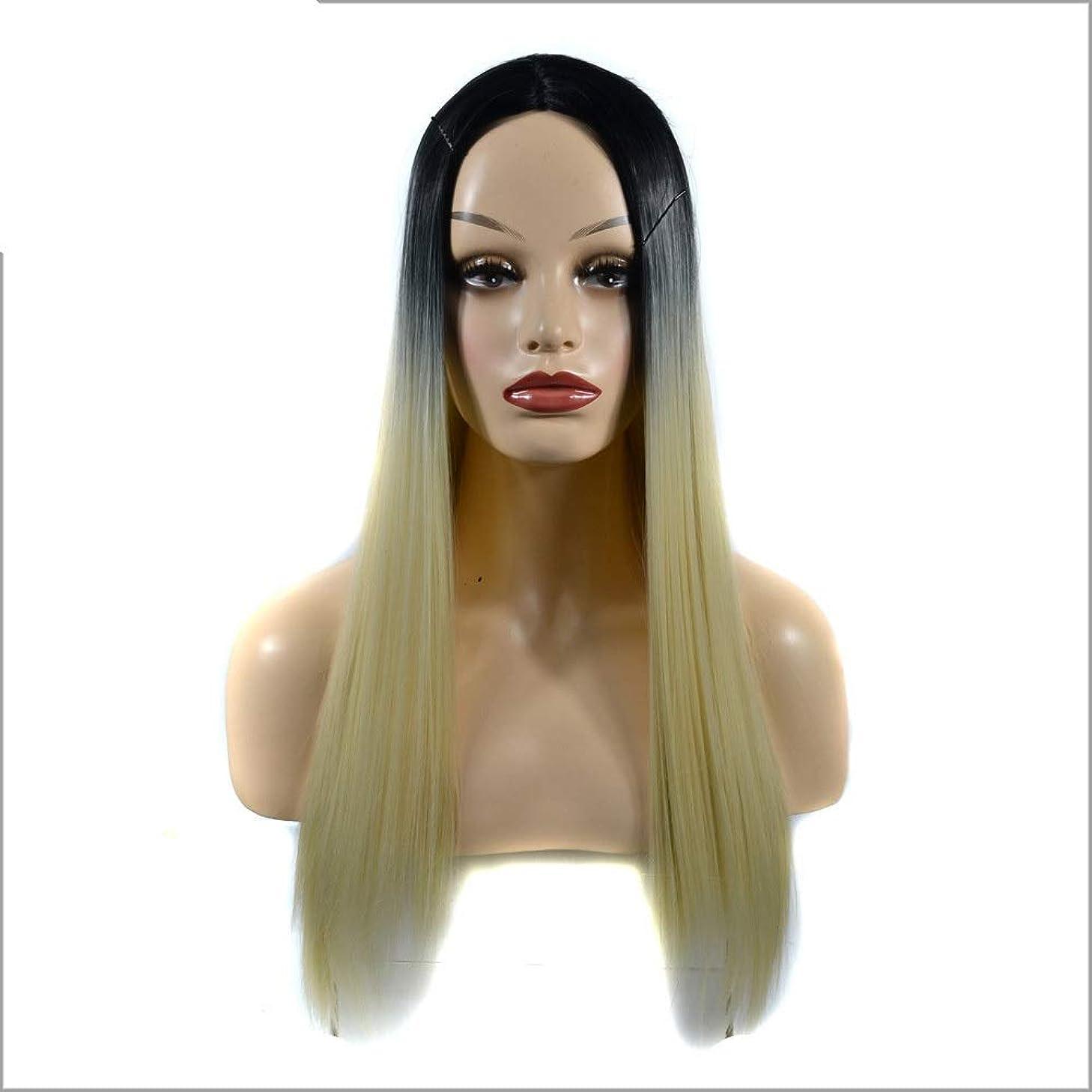 折る分数顕著HOHYLLYA 女性の長いストレートフルかつらコスチューム人工毛ヘアピースアニメコスプレパーティーガール+かつらキャップパーティーかつら (色 : Gradient, サイズ : 60cm)