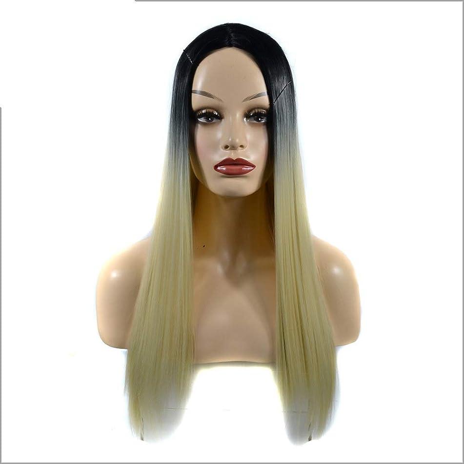 ステープルおとなしいパッチYESONEEP 女性の長いストレートフルかつらコスチューム人工毛ヘアピースアニメコスプレパーティーガール+かつらキャップパーティーかつら (Color : Gradient, サイズ : 60cm)