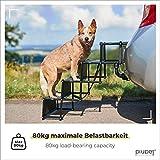 Zoom IMG-1 piupet rampa per cani grandi