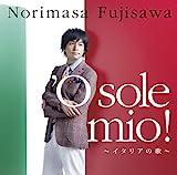 'O sole mio !(オ・ソレ・ミオ) 歌詞