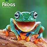 Frogs 2021 12 x 12 Inch Monthly Square Wall Calendar, Wildlife Animals