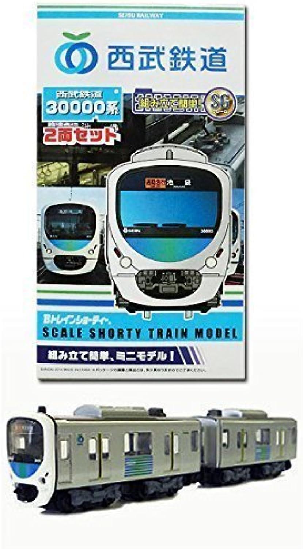 B Train Shorty Seibu Railway 30000 system