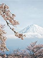 大人の5Dダイヤモンドペインティングキット富士山の角にある桜、日本のダイヤモンドアートキットは、大人のダイヤモンドペインティング用のダイヤモンドドットキットでペイントします(40x50cmスクエアダイヤモンド)