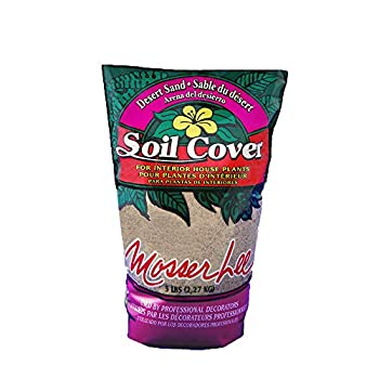 Best sand for plants Reviews