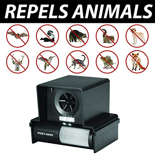11 Best Solar Animal Repellers For [year] [Top Reviews] 3