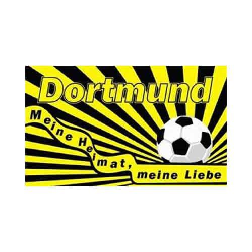 TS24direkt Dortmund - Meine Heimat Meine Liebe Fahne (F58)