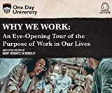 Why We Work: An Eye-Opening Tour of the Purpose of Work in Our Lives