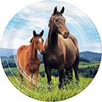 Wild Horse デザートプレート 24枚