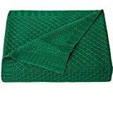 NTBAY Natural Bamboo Cable Knit Toddler Blanket, Soft and Cooling Touch Baby Blanket, 30 x 40 Inches, Green