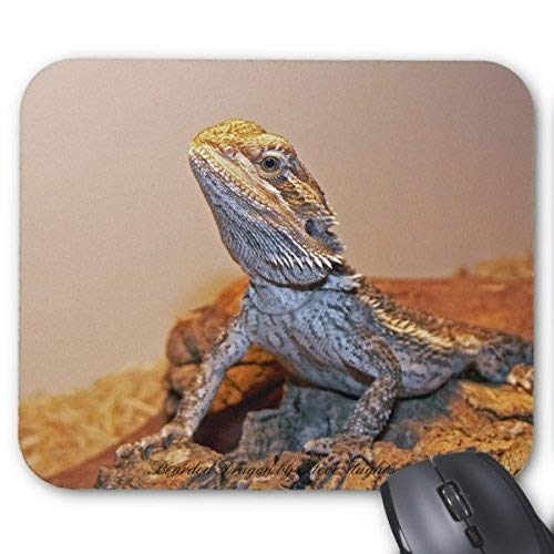 Yanteng Dragón Barbudo Mousepad