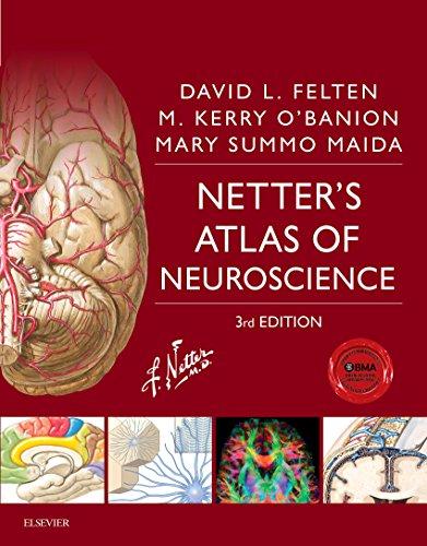 Netter\'s Atlas of Neuroscience E-Book (Netter Basic Science) (English Edition)