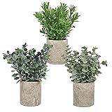 YQing 3 Piezas Planta en Maceta Artificial, Artificiales Eucalipto de Plástico Plantas en maceta para el hogar, oficina, escritorio o decoración de la habitación
