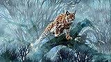 Lince Animal 05 Puzzle 1000 Piezas Para Adultos Rompecabezas,...