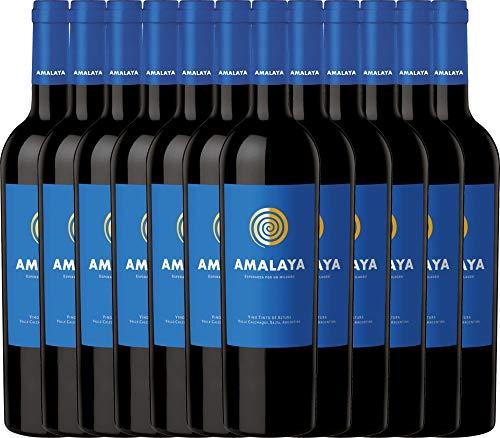 12er Weinpaket Rotwein - Amalaya Tinto 2018 - Bodega Colomé mit VINELLO.weinausgießer | trockener Rotwein | argentinischer Wein aus Salta | 12 x 0,75 Liter
