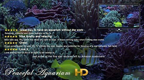 『Peaceful Aquarium HD』の5枚目の画像