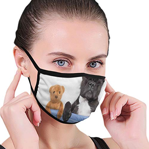 KGSPK Face Cover French Bulldog Sleeping with Teddy Bear in Cozy Bed Best Friends Fun Dreams Image Balaclava Unisex Reusable Windproof Anti-Dust Mouth Bandanas for Teen Men Women