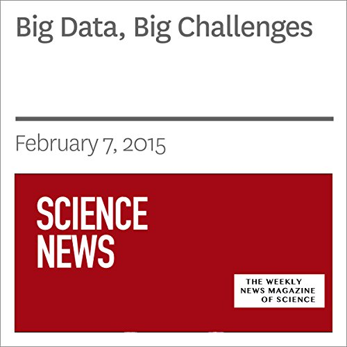 Big Data, Big Challenges audiobook cover art