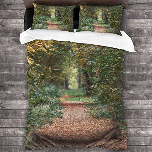 BROWCIN Juego de Sábanas otoño Bosque Naturaleza Sendero en árboles Amarillos Naturaleza Escena en Parque otoñal Juego de Funda nórdica y Funda de Almohada(240*260cm)