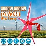 TQ 4000W / 5000W 12V 24V de Viento generador de energía de Viento Turbinas 5 Generador de Energía Eólica aspa de Molino de Carga Libre Regulador Gift Set,Rojo,12v