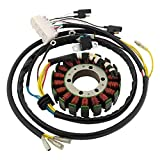 DB Electrical New 340-22025 Powersports Stator Coil 597cc Compatible with/Replacement for Polaris Sportsman 600 2004, Sportsman 600 Twin 2004 APO4005 4010901 21-558