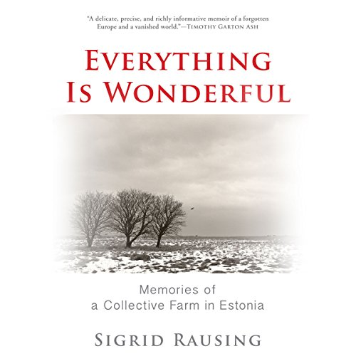 Everything Is Wonderful audiobook cover art