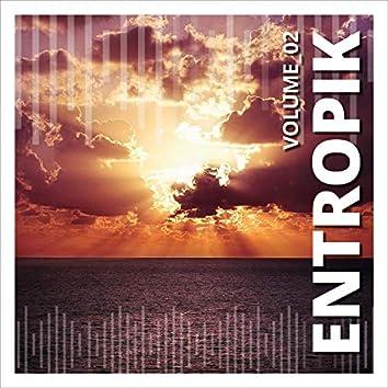 Entropik, Vol. 2