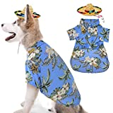 Barleygoo Hawaiian Dog T-Shirt with Straw Hat Summer Camp Clothes Coconut Tree Pineapple and Flower Apparel Suit for Small to Medium Dogs Blue X-Large