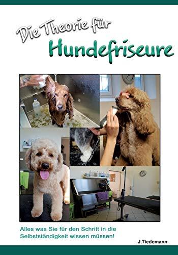 Die Theorie für Hundefriseure: Was Sie für den Schritt in die Selbstständigkeit wissen müssen