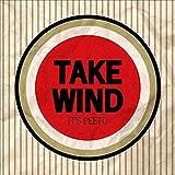 TAKE WIND / peeto