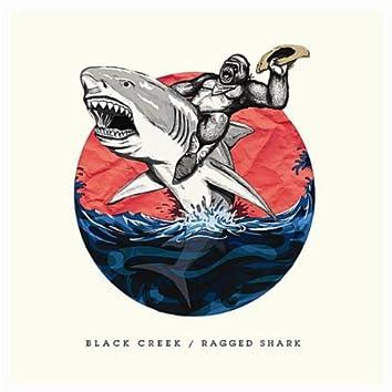 Ragged Shark
