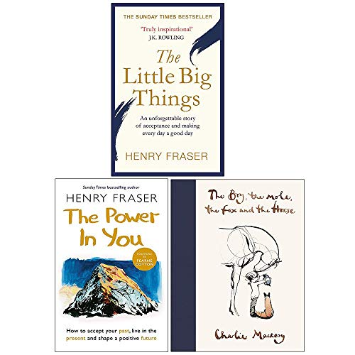 The Little Big Things, The Power in You, The Boy The Mole The Fox and The Horse 3 Books Collection Set