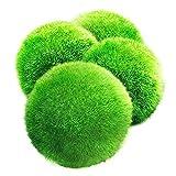 4 piezas de acuario de plantas acuáticas in vivo botella ecológica decoración de paisajismo bola de algas verdes (aproximadamente 4,5 cm después de remojar en agua)
