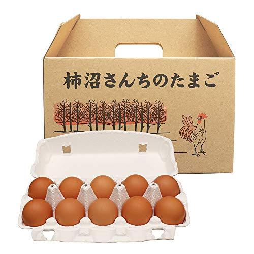 にほんアグリたうん ビタミンAが豊富で おいしい卵 (柿沼)かきぬまさんちのたまご (赤M20個入)