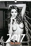 Erotik-Kalender 2017 | Wand-Kalender | Hochwertiger DIN A3 Akt-Kalender | Sexy Frauen | Live-Strip -