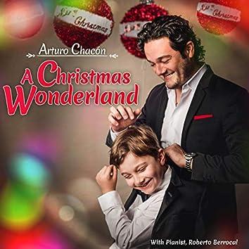 A Christmas Wonderland