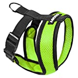 Gooby Cat Harnesses - Best Reviews Guide
