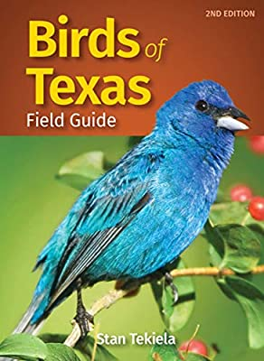 Birds of Texas Field Guide (Bird Identification Guides) from Adventure Publications