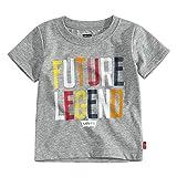 Levi's Baby Boys Graphic T-Shirt, Grey/Legends, 6M