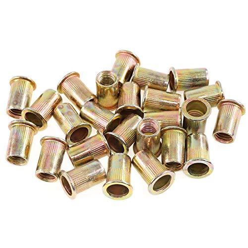 Keadic 100Pcs M10 Metric Zinc Plated Carbon Steel Rivet Nut Flat Head Threaded Insert Nutsert Kit (M10)